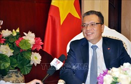 Di sản của Chủ tịch Hồ Chí Minh là kim chỉ nam cho đường lối, hoạt động đối ngoại của Việt Nam