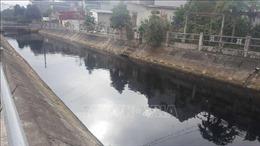Nạo vét sông Đoan Túc,Thái Bình để xử lý ô nhiễm môi trường