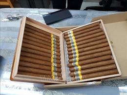 Hà Nội thu giữ hơn 15.000 điếu xì gà nhập lậu