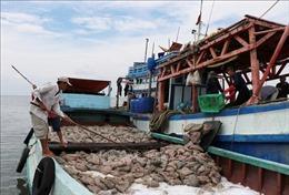 Việt Nam quyết tâm chống khai thác hải sản bất hợp pháp
