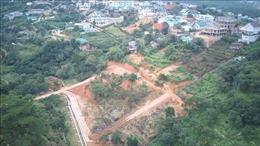 Đà Lạt 'hỏa tốc' xử lý việc phân lô, bán đất nền trái phép