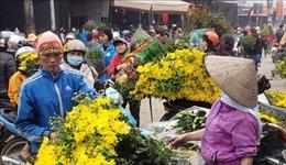 Nhộn nhịp chợ hoa Mê Linh ngày giáp Tết