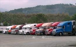 Chủ động giải pháp xuất nhập khẩu với thị trường Trung Quốc