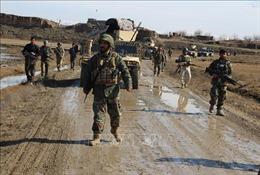 Chín dân quân ủng hộ chính phủ Afghanistan bị thiệt mạng trong vụ tấn công của Taliban