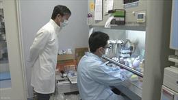 Thử nghiệm tế bào gốc iPS để chữa bệnh Parkinson