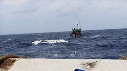 Bệnh xá đảo Sơn Ca cứu chữa hai ngư dân gặp nạn
