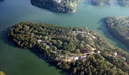 Đình chỉ thi công bệnh viện lấn rừng phòng hộ hồ Tuyền Lâm, Lâm Đồng