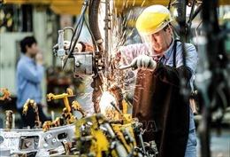 Toyota Việt Nam công bố tạm dừng sản xuất vì dịch COVID-19