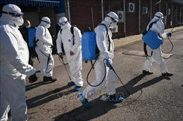 Eurozone sẽ ứng phó 'không giới hạn' đối với virus SARS-CoV-2