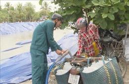 Cấp nước ngọt miễn phí 'cứu khát' cho trên 12.000 ha cây sầu riêng