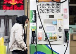 Giá dầu trên thị trường Mỹ xuống còn 12,31 USD/thùng