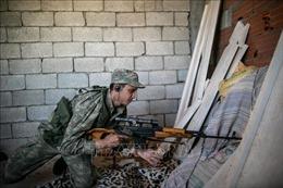 Châu Âu kêu gọi ngừng bắn nhân đạo ở Libya