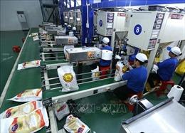 Thanh tra Chính phủ vào cuộc, thanh tra quản lý về xuất khẩu gạo