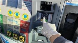 Giá dầu giảm kỷ lục, Mỹ mua 75 triệu thùng cho kho dự trữ chiến lược quốc gia