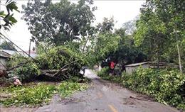 Lai Châu: Dông lốc, mưa đá diện rộng gây thiệt hại lớn về tài sản