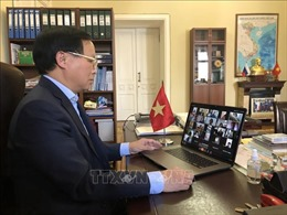 Tọa đàm trực tuyến về phòng chống COVID-19 hỗ trợ cộng đồng người Việt tại LB Nga