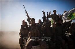 Iraq tăng cường truy quét các phần tử IS