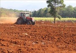 Huyện miền núi Phú Yên đối phó với hạn