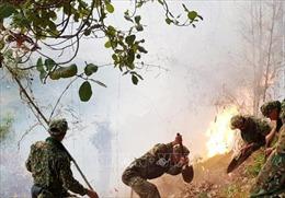 Tập trung dập tắt cháy rừng ở huyện Hòn Đất, Kiên Giang