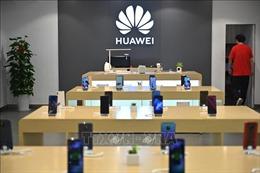 Mỹ cân nhắc khả năng siết chặt hạn chế bán chip cho Huawei