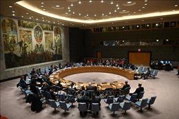 Hội đồng Bảo an LHQ họp về ứng phó đại dịch COVID-19