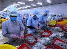 Doanh nghiệp xuất khẩu thủy sản gặp khó với quy định sử dụng mã số, mã vạch nước ngoài