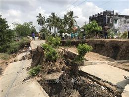 Nhiều giải pháp khắc phục sự cố sụt lún đê biển Tây tại Cà Mau