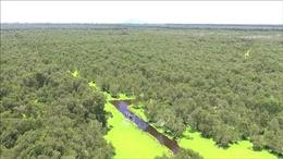 Ngày Môi trường thế giới năm 2020: Ngăn chặn đà suy giảm đa dạng sinh học ở Việt Nam