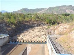Gần 26.000 hộ dân ở Khánh Hòa có nguy cơ thiếu nước sinh hoạt