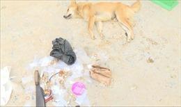 Hung hãn dùng dao chém người khi bị phát hiện bắt trộm chó