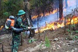 Nghệ An: Huy động tối đa lực lượng dập tắt cháy rừng tại xã Diễn Phú