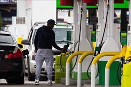 Giá dầu thế giới giảm khoảng 8% trong phiên 11/6