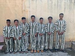 Khởi tố, bắt tạm giam một nhân viên bảo vệ rừng ở Gia Lai