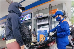 Petrolimex sẽ trình Đại hội cổ đông tỷ lệ cổ tức 30% cho năm 2019