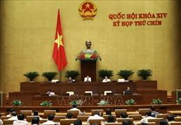 Hoàn thiện dự thảo Luật Người lao động Việt Nam đi làm việc ở nước ngoài theo hợp đồng (sửa đổi)