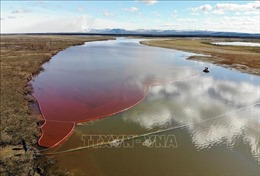 Sự cố tràn dầu ở Bắc Cực: Dầu đã loang đến hồ Pyasino