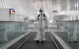 WHO cử chuyên gia tới Trung Quốc để điều tra nguồn gốc virus SARS-CoV-2
