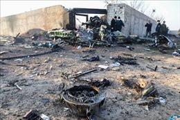 Iran cử phái đoàn sang Ukraine thảo luận bồi thường vụ bắn nhầm máy bay