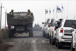 Lệnh ngừng bắn tại miền Đông Ukraine bắt đầu có hiệu lực