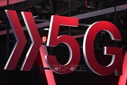 Anh đề nghị Nhật Bản giúp xây dựng mạng 5G thay thế Huawei