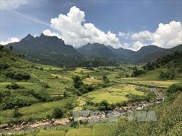 Phát triển Y Tý (Lào Cai) thành khu du lịch nghỉ dưỡng, đậm bản sắc văn hóa dân tộc