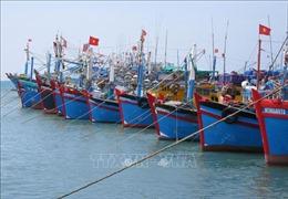 Trang Foreign Affair Asia: Việt Nam nỗ lực gỡ bỏ thẻ vàng IUU