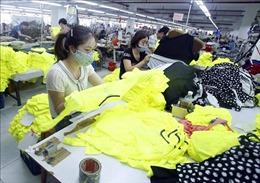 Fitch Solutions: Việt Nam có nhiều cơ hội phát triển về dệt may