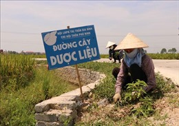 Lan tỏa các mô hình bảo vệ môi trường của phụ nữ Bắc Ninh