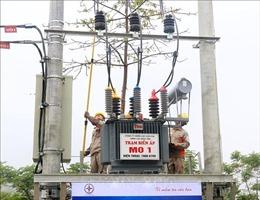 Một công nhân điện lực Lào Cai tử nạn khi phát quang lưới điện