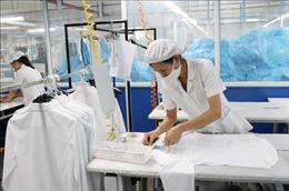 Giới chuyên gia: Việt Nam có thể là hình mẫu hoàn hảo phục hồi sau COVID-19
