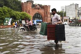Trong vòng 24 giờ, 18 người dân Ấn Độ bị thiệt mạng vì sét đánh