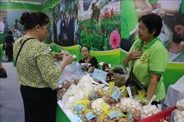 Hà Nội đặt mục tiêu có thêm 400 sản phẩm OCOP trong năm nay