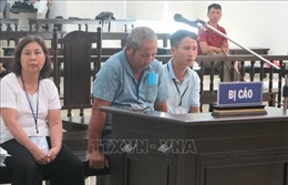 Y án sơ thẩm vụ làm giả hồ sơ xin cấp sổ đỏ ở Ba Vì (Hà Nội)
