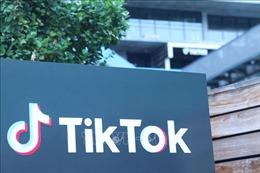 Các nhà kinh tế quan ngại về lệnh cấm của Mỹ đối với TikTok